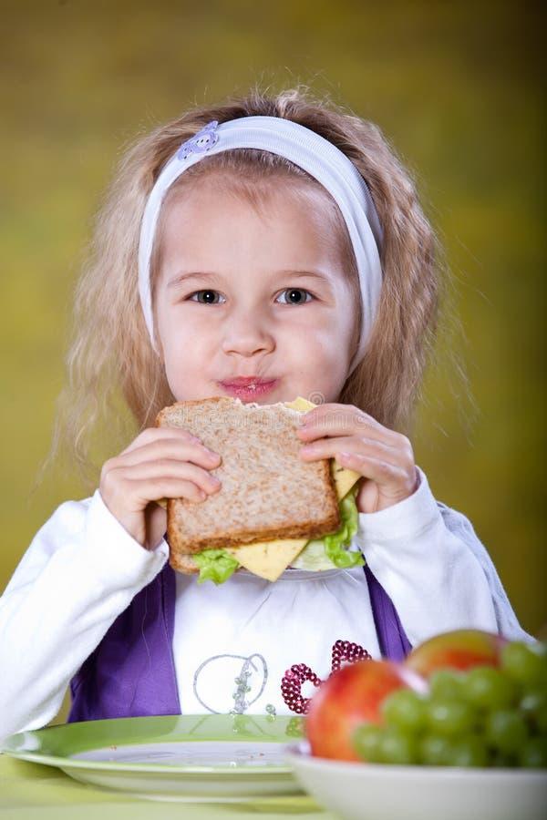 Free Sandwich Stock Photo - 18713740