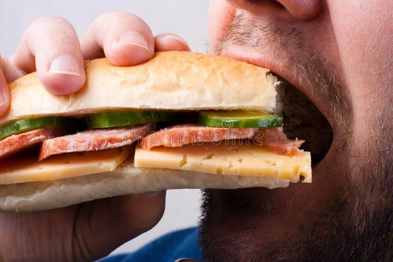 Sandwich. Man eats appetizing sandwich closeup on white background royalty free stock photography