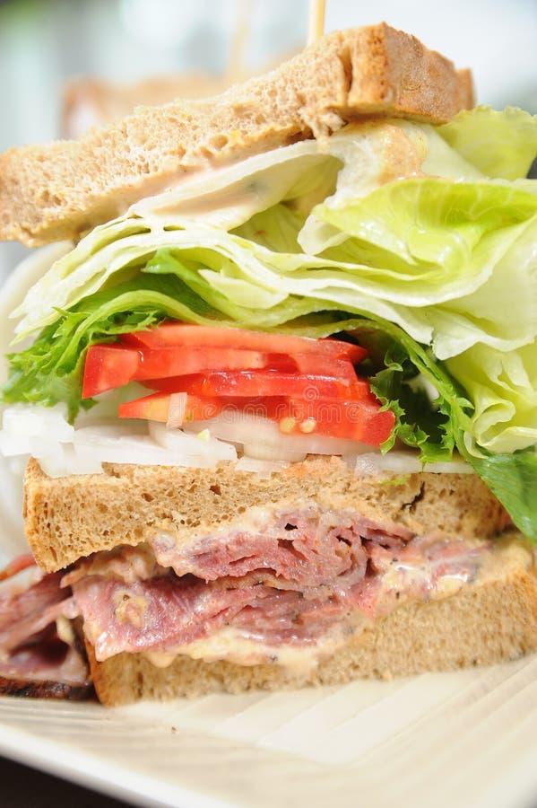 Free Sandwich 2 Stock Photos - 15091903
