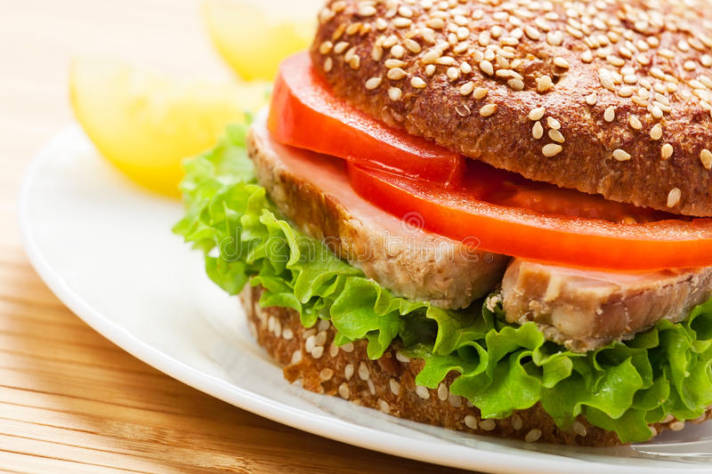 Download Sandwich stock photo. Image of cuisines, isolated, lunch - 23267766