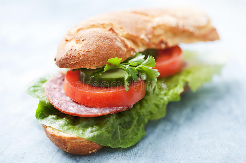 Sandwich. With lettuce, salami,tomato, cucumber and parsley stock photography