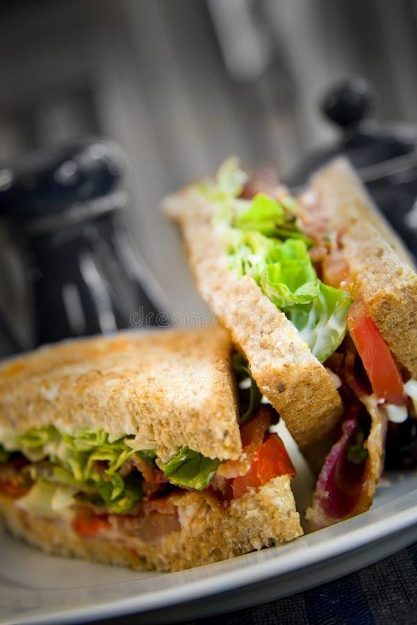 Free Sandwich Royalty Free Stock Photos - 2931288