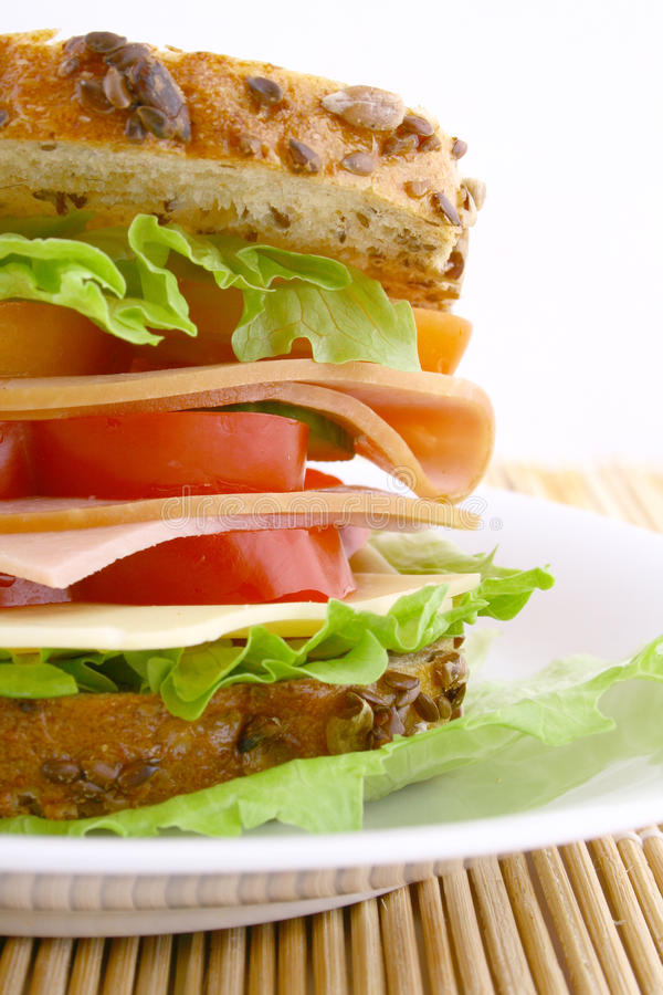 Free Sandwich Stock Photo - 9370840