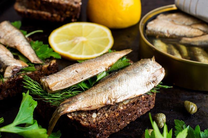 Sandwich avec des sardines photos libres de droits