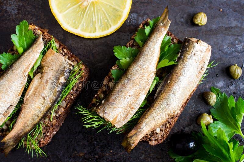 Sandwich avec des sardines image libre de droits