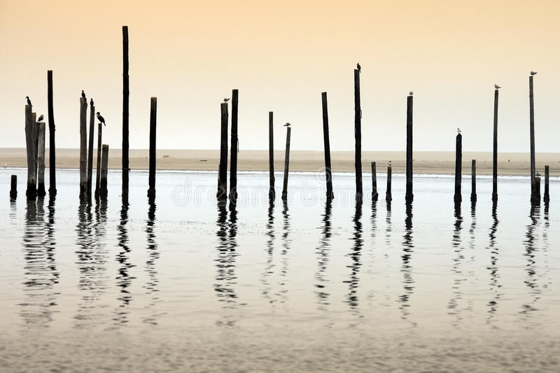 Download Sandwich Bay in Namibia stock photo. Image of ocean, coastal - 10816270