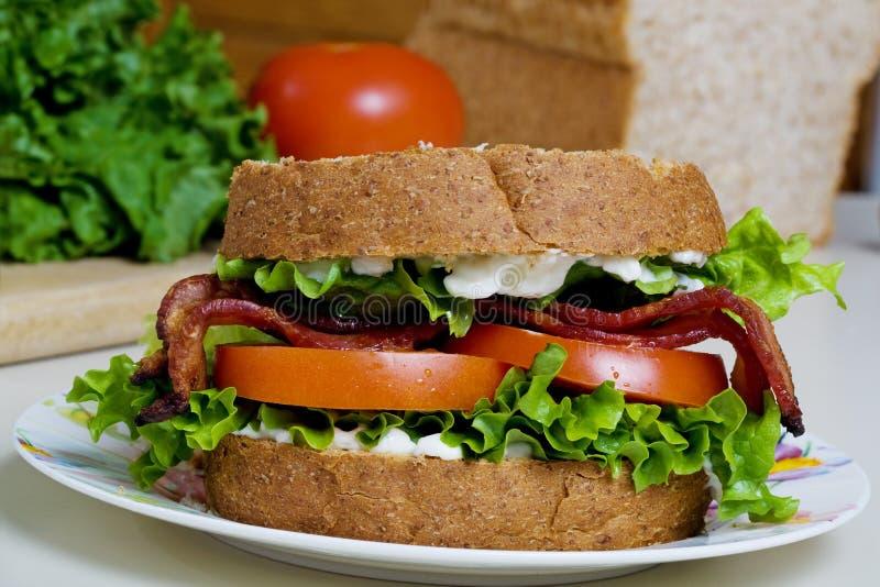 Sandwich BLT royalty-vrije stock foto