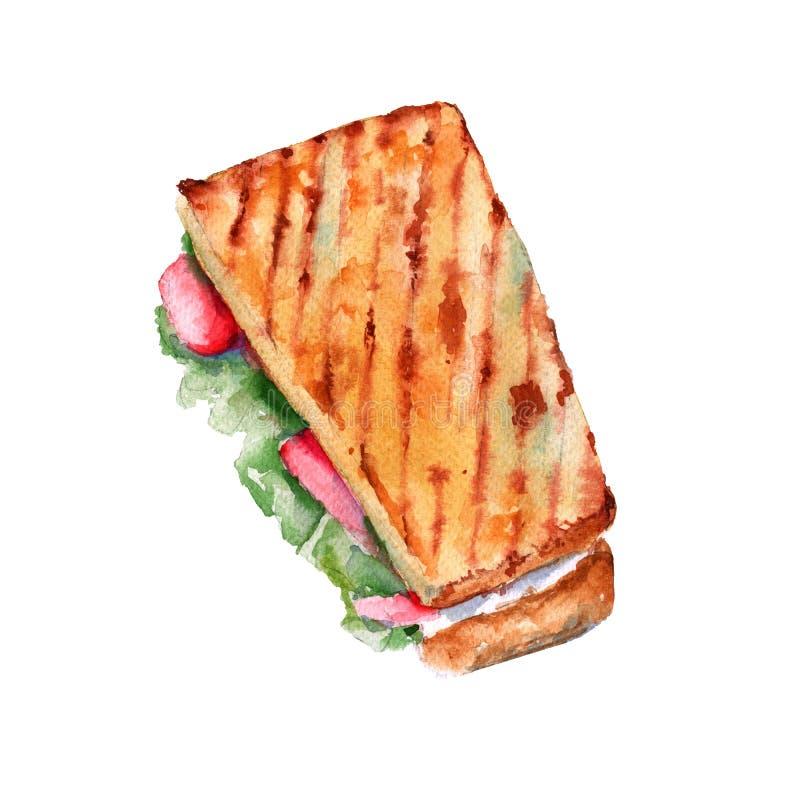 Sandwich chaud D'isolement sur le fond blanc illustration libre de droits
