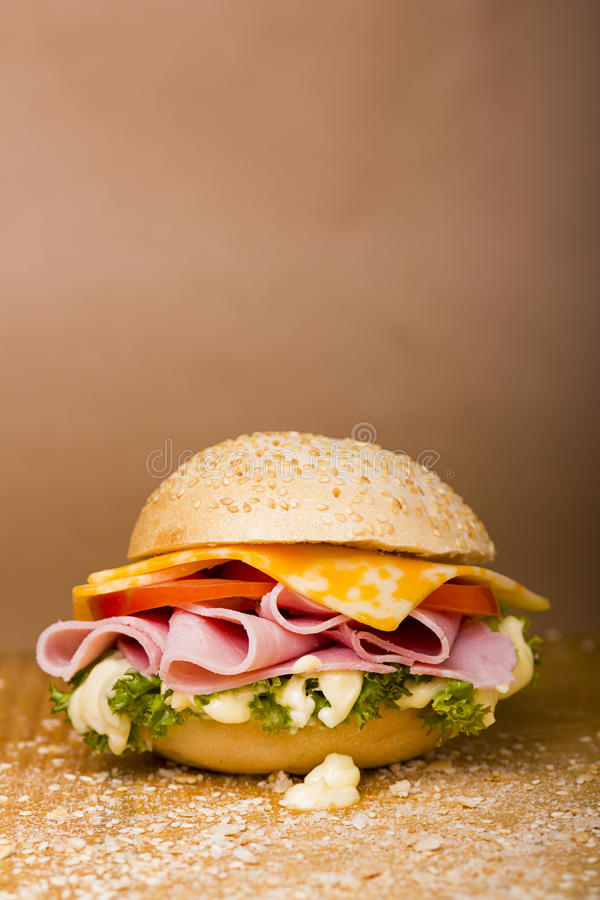so sandwich! royalty free stock photos