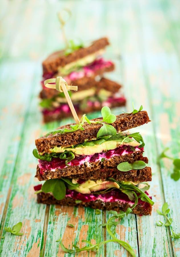 Sandwich der roten Rübe, der Avocado und des Arugula lizenzfreies stockbild