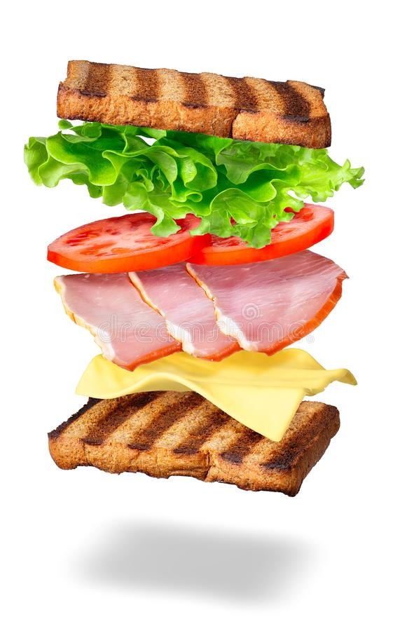 Sandwich with flying ingredients stock photo