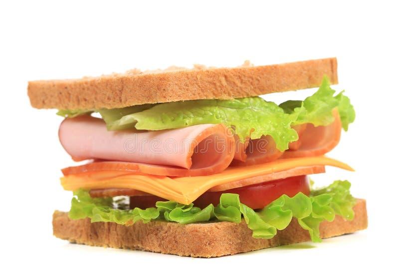 Sandwich frais à pain grillé. photo libre de droits