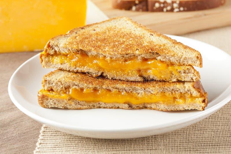 Sandwich grillé fait maison traditionnel à fromage photos libres de droits