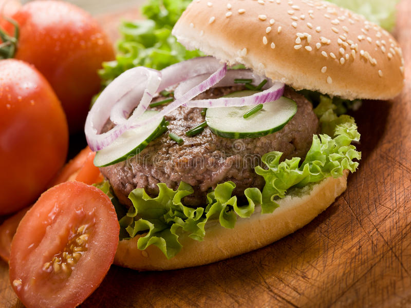 Download Sandwich with hamburger stock photo. Image of fast, bread - 21408202