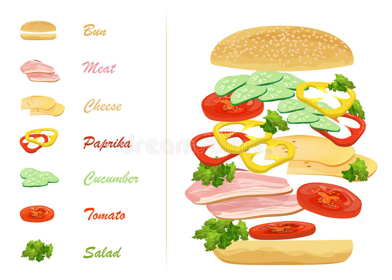Sandwich ingredients with text infographics. Floating hamburger. stock illustration