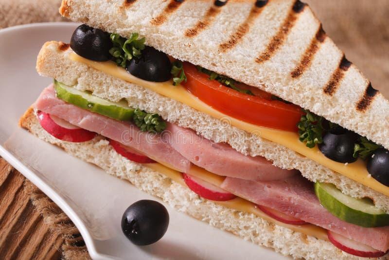Sandwich met ham, kaas en groentenmacro op een plaat royalty-vrije stock afbeelding