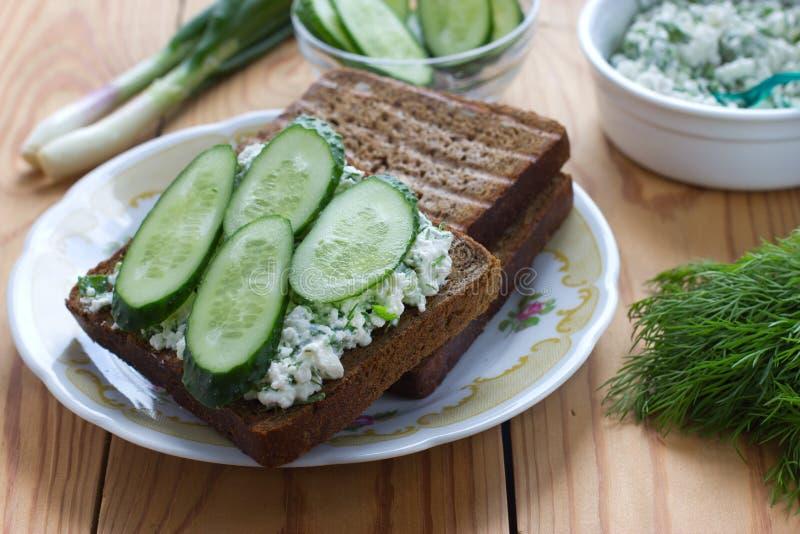 Sandwich mit Hüttenkäse, Gurke und Dill stockbild