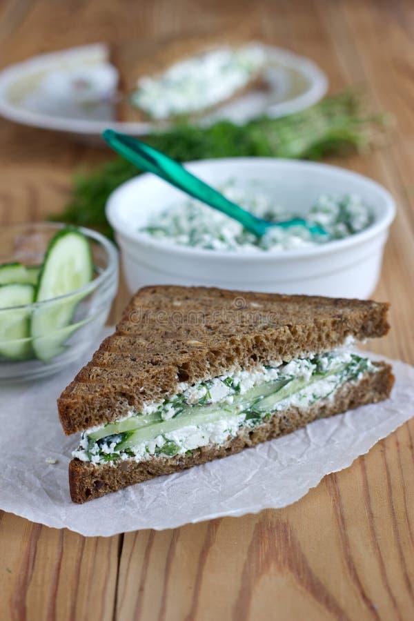 Sandwich mit Hüttenkäse, Gurke und Dill stockfotografie