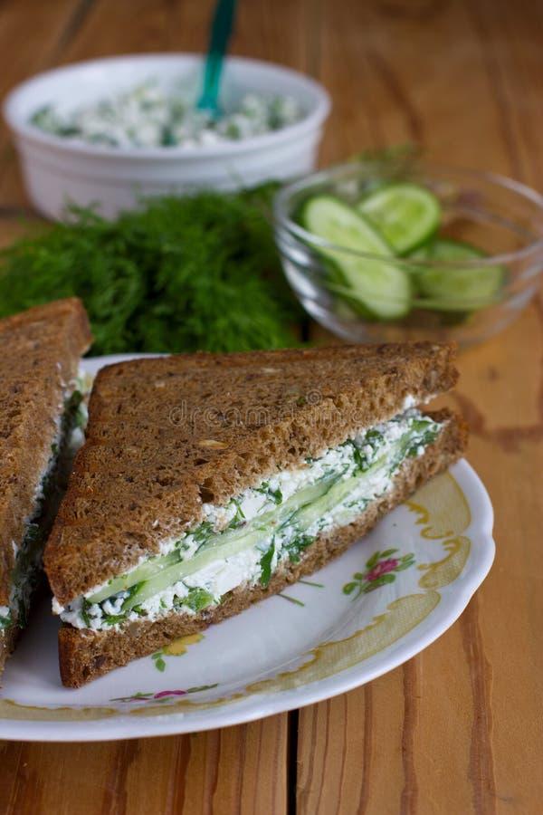 Sandwich mit Hüttenkäse, Gurke und Dill lizenzfreies stockfoto