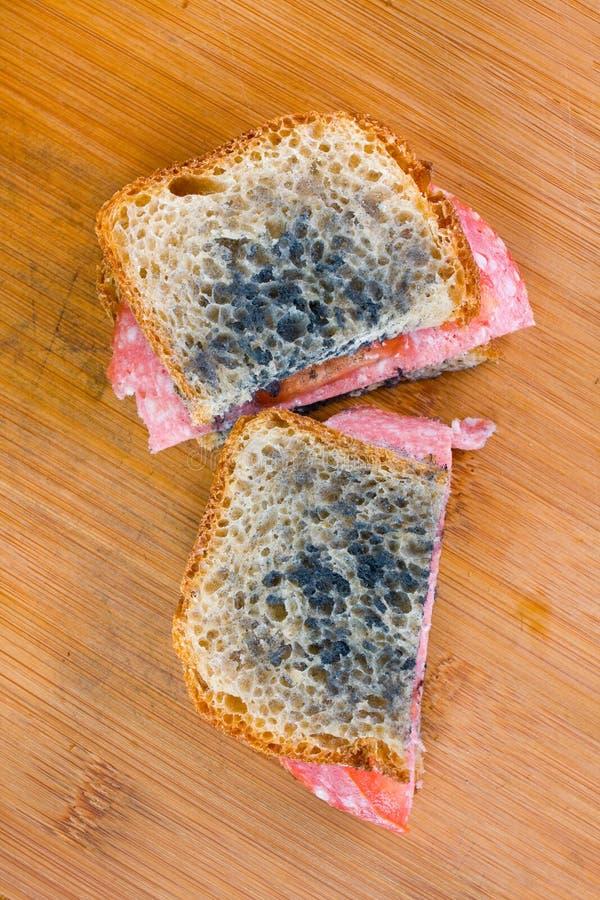 Sandwich moisi avec le salami photos libres de droits