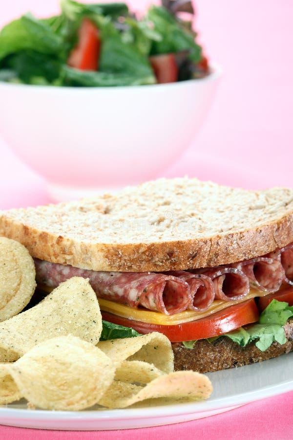 Sandwich onpink lizenzfreie stockfotos