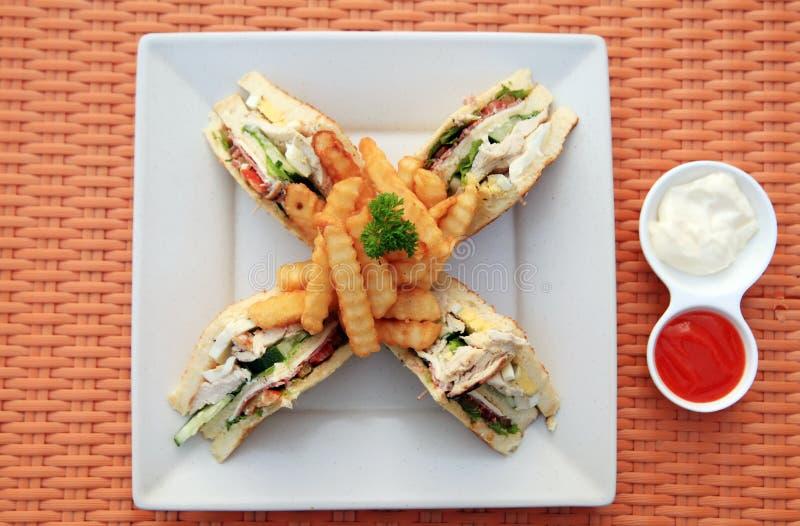 Download Sandwich portion closeup stock photo. Image of diet, closeup - 21050952
