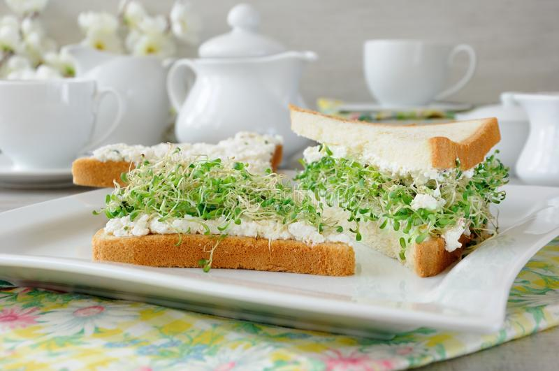 Sandwich with ricotta and alfalfa sprouts royalty free stock photos