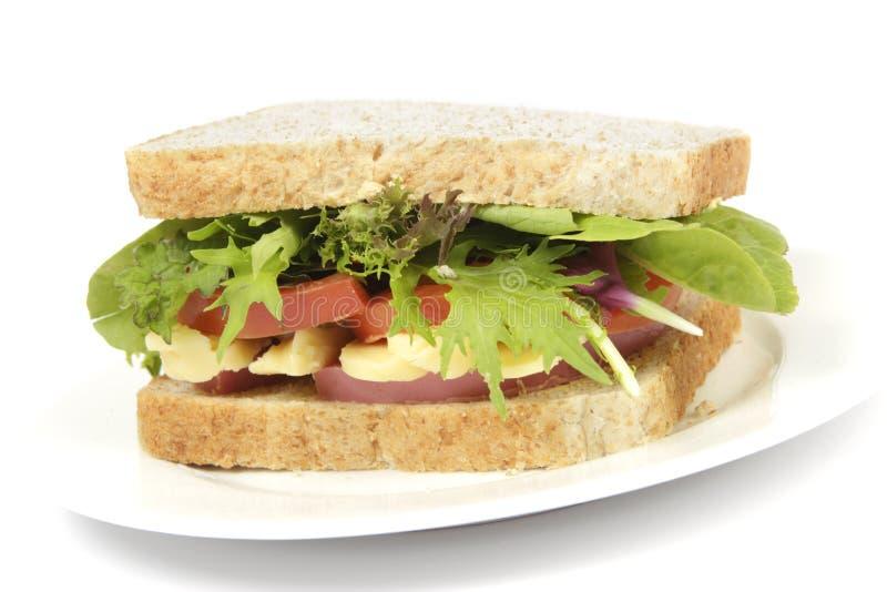 Sandwich sain à pain brun de plaque photo libre de droits