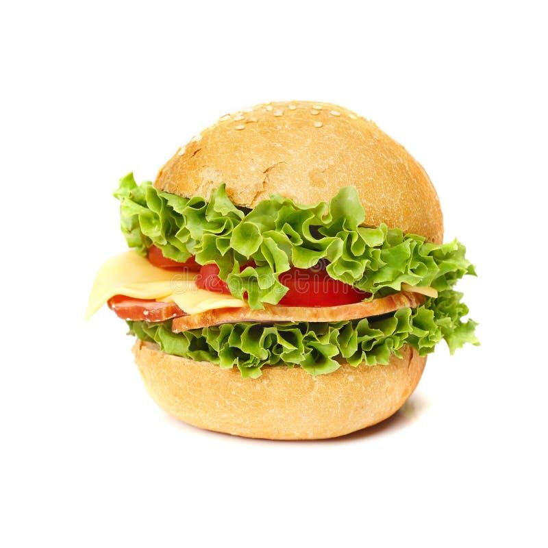 Sandwich savoureux photo stock
