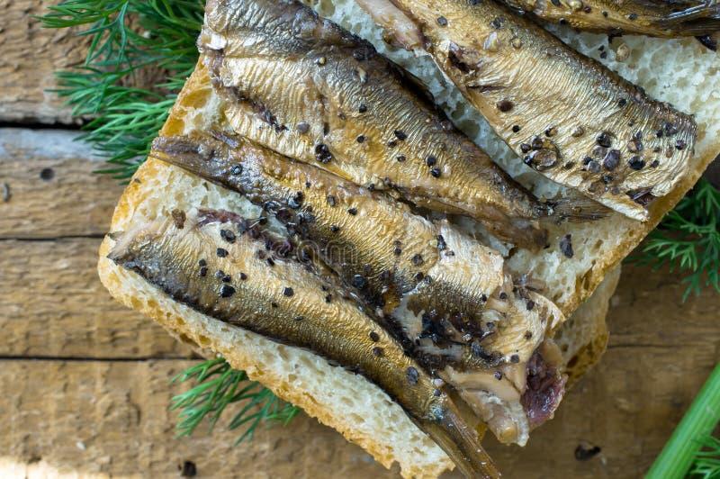 Sandwich simple avec des sardines image libre de droits