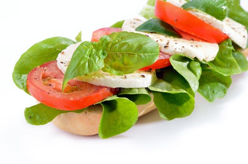Sandwich with tomato and mozzarella stock image