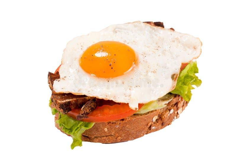 Geïsoleerdee de sandwich van het ei royalty-vrije stock foto