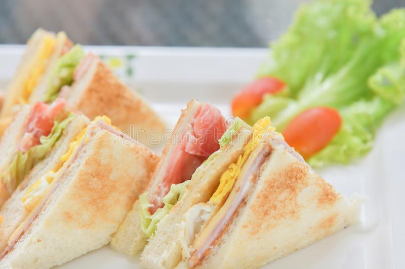 Sandwiches breakfast with salad and tomato on the white plate royalty free stock images