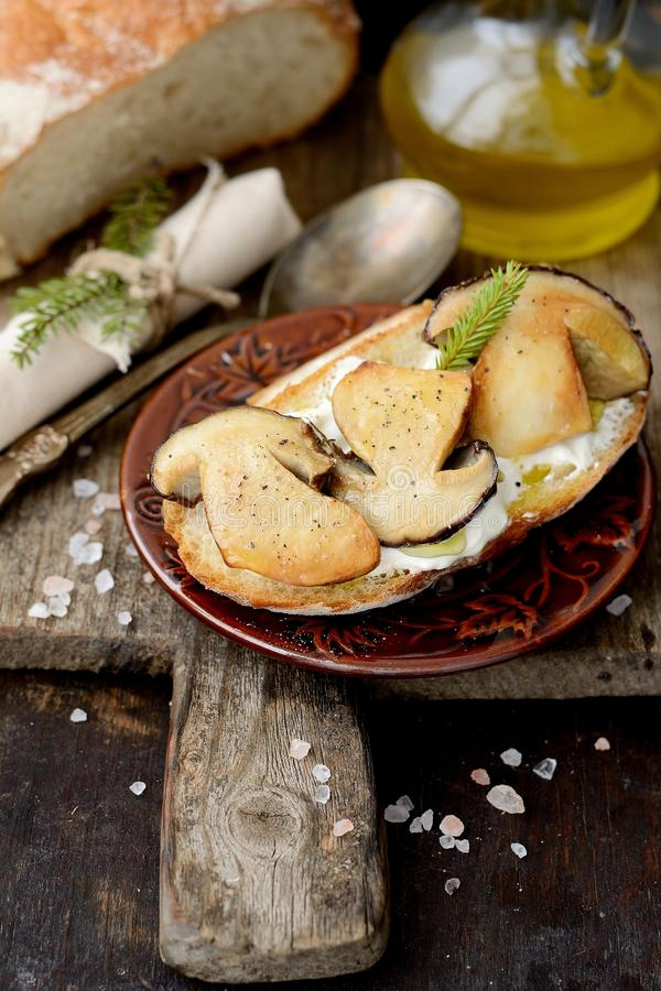 Sandwiches with mushrooms and sour cream. Delicious bruschetta with cerps on plate on table close-up stock images