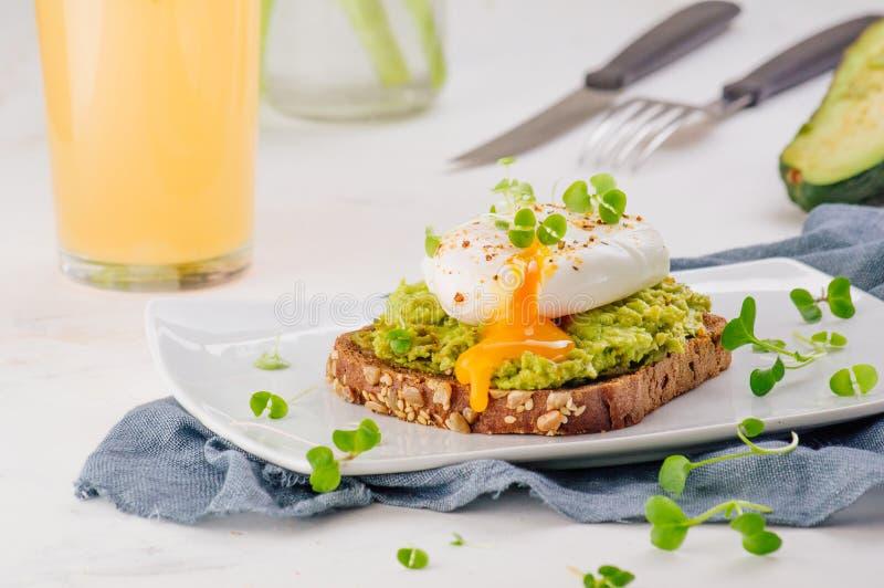 Sandwichs faits maison avec l'avokado, l'oeuf poché et les pousses de radis images libres de droits