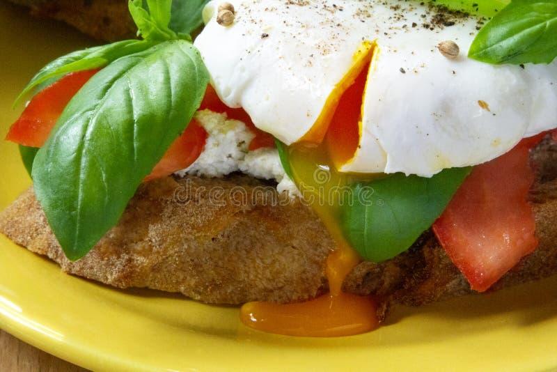 Sandwichs sains à petit déjeuner avec l'oeuf poché, la tomate et le basilic photos stock