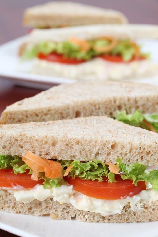 Sandwichs végétariens photographie stock libre de droits