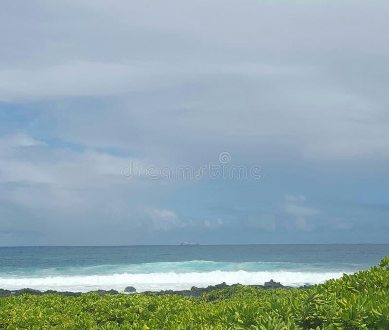 Sandy immagine stock