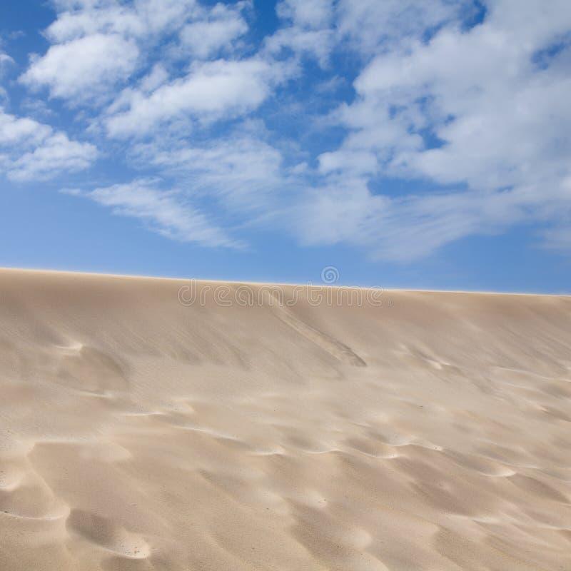 Sandy-Auszug lizenzfreies stockbild