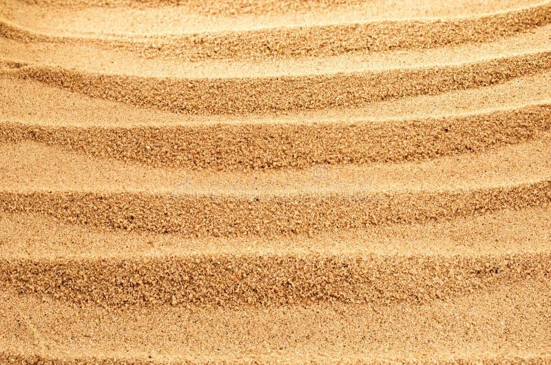 Download Sandy background. stock image. Image of pattern, seashore - 22910585