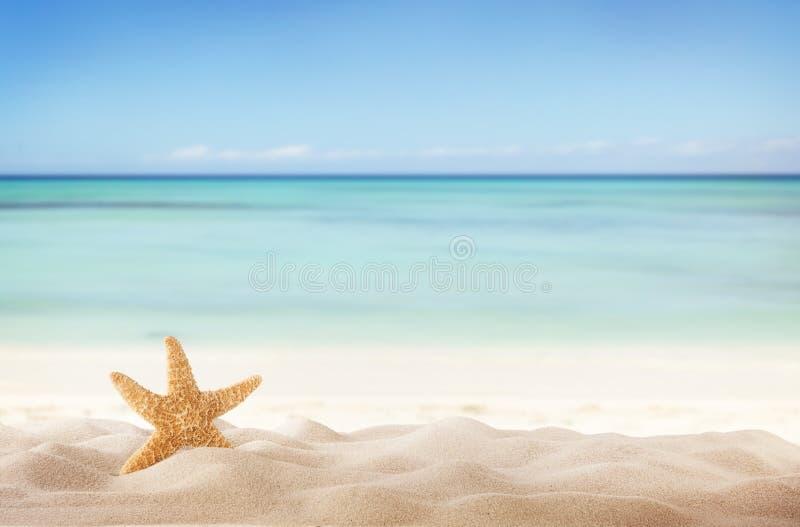 Sandy Beach immagine stock