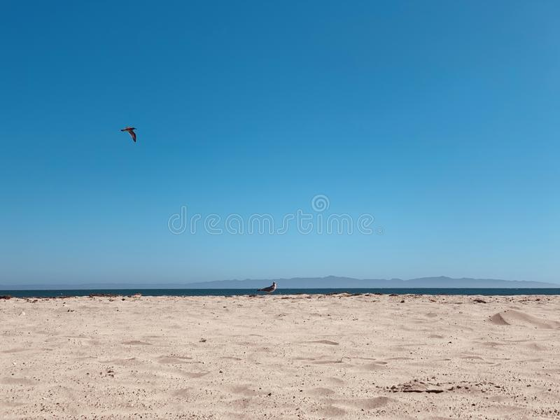Sandy beach along the pacific.  Harbor – Port Marina del Rey, Santa Barbara, California.  stock photo