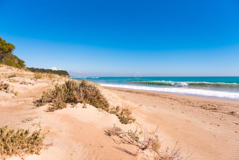 Sandy Beach Beach Playa Torn Copie el espacio para el texto fotografía de archivo libre de regalías