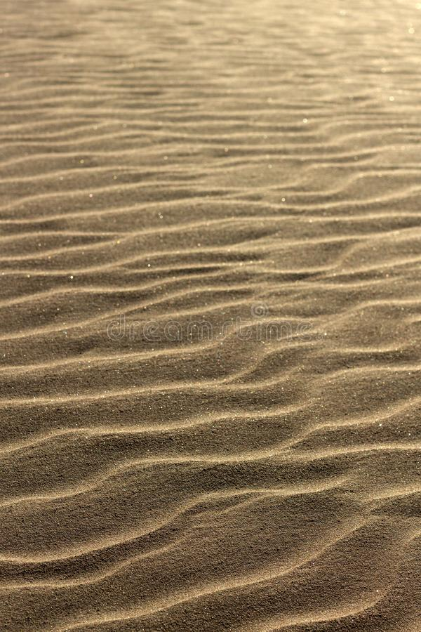 Sandy beach. Sunny day. Sparkling and wavy sand. royalty free stock image