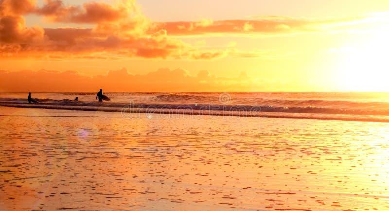 Sandy Beach bonito no por do sol em Cape Town imagem de stock royalty free
