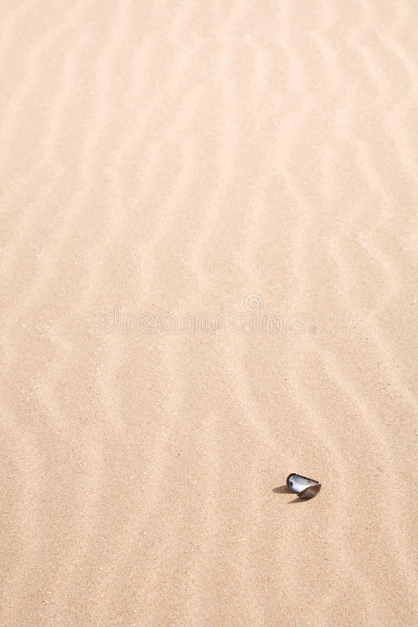 Download Sandy beach detail stock image. Image of copy, close - 28665645