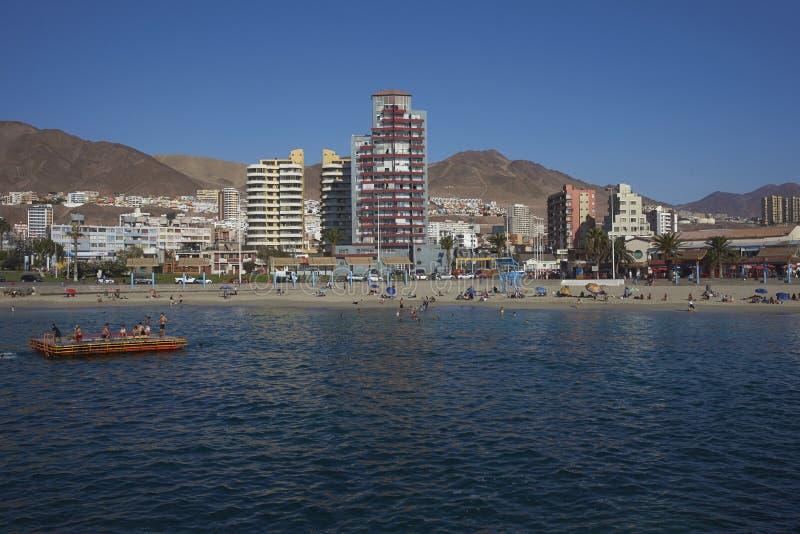 Sandy Beach em Antofagasta, o Chile imagens de stock