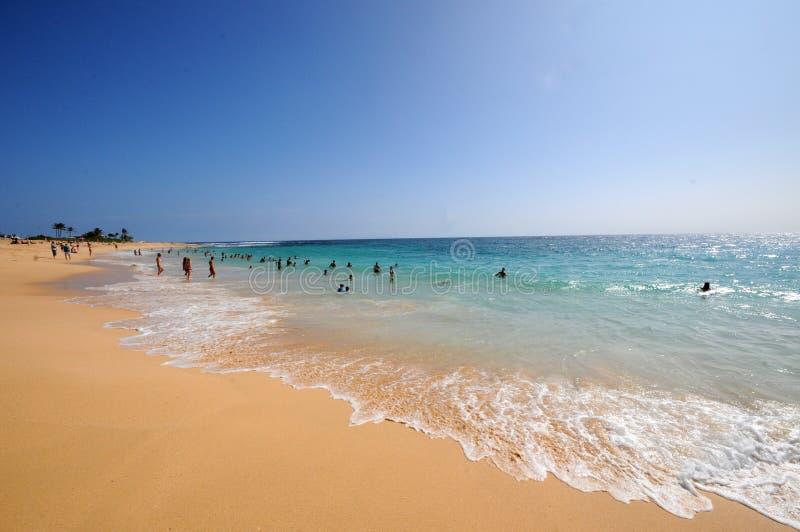 Sandy Beach Hawaii arkivbilder