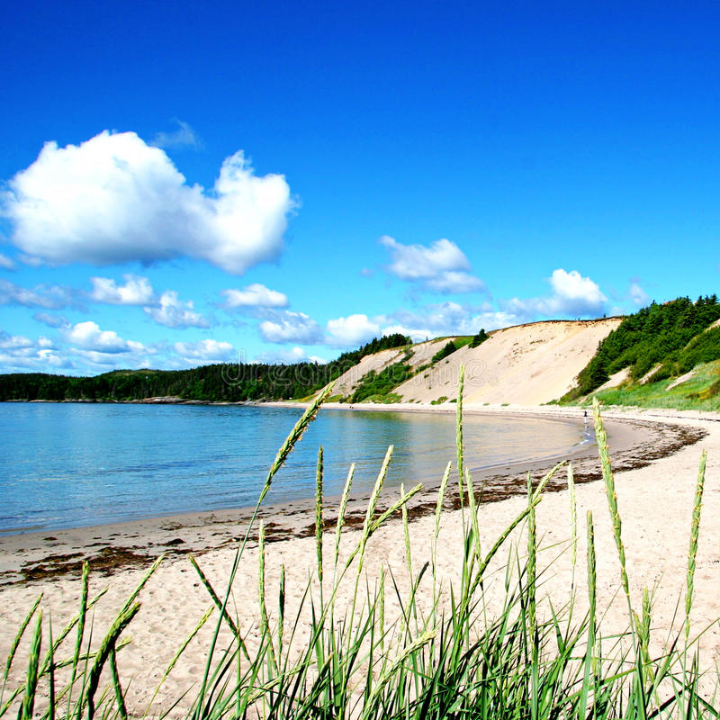 Sandy Beach in Landelijk Newfoundland stock afbeelding