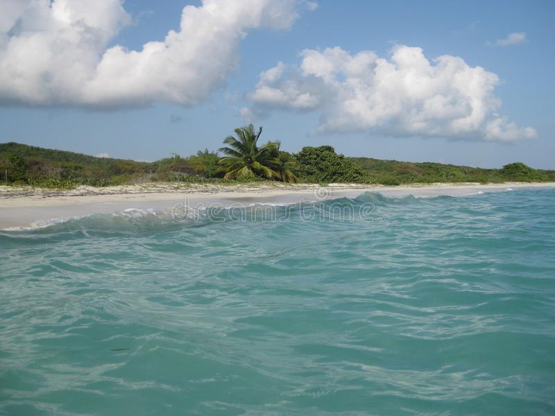 Sandy beach on Vieques Island. A sandy beach with lush tropic vegetation and turquoise sea, Vieques Island, Puerto Rico royalty free stock photos